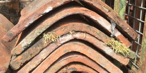 treesave reclamation roof ridge tiles